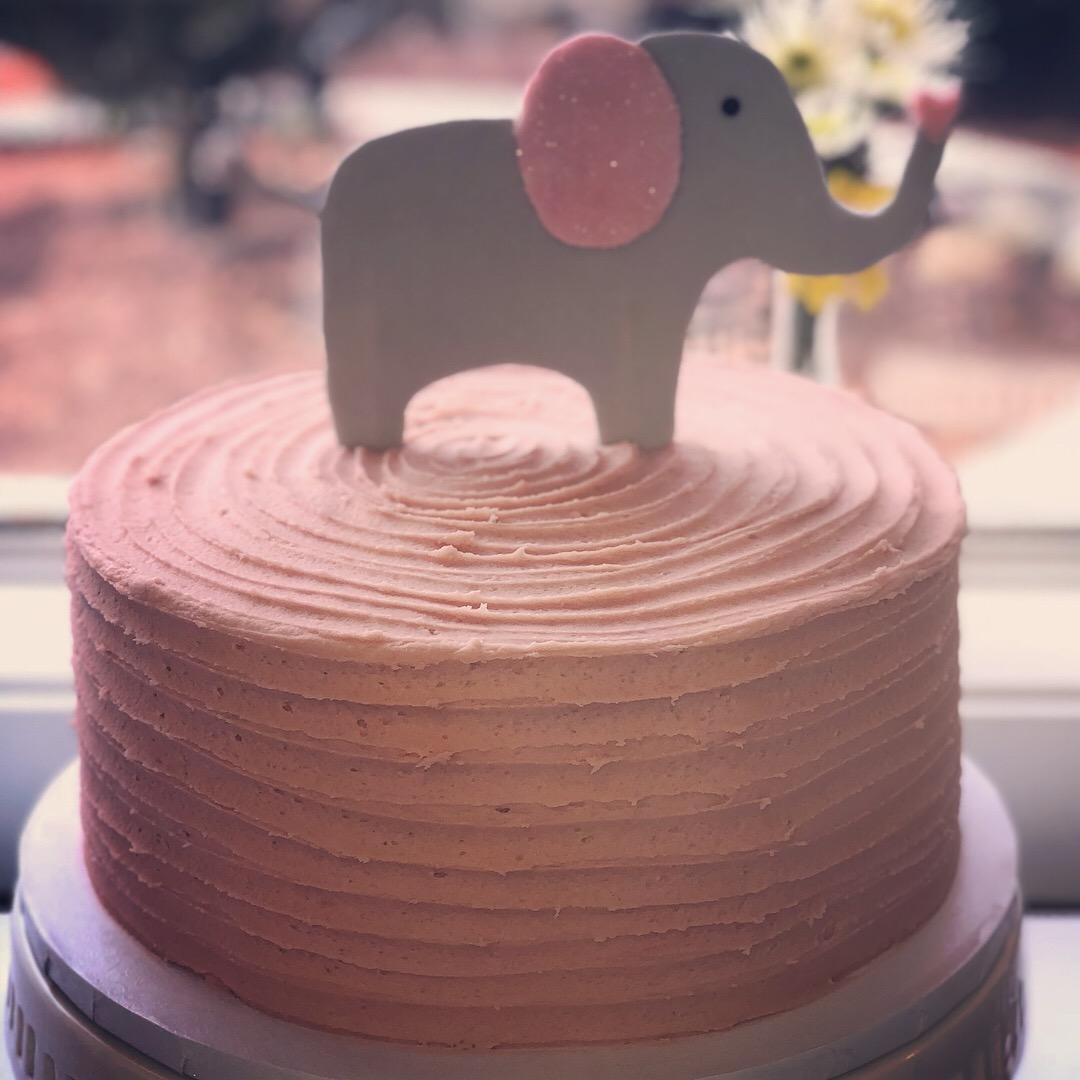 Elephant Shower1